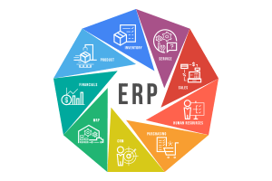 Custom ERP/CRM Development